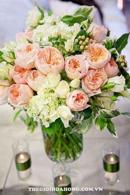 Hoa hồng leo trang trí bàn đón khách