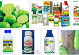 Thương hiệu phân phối thuốc bảo vệ thực vật đóng vai trò quan trọng